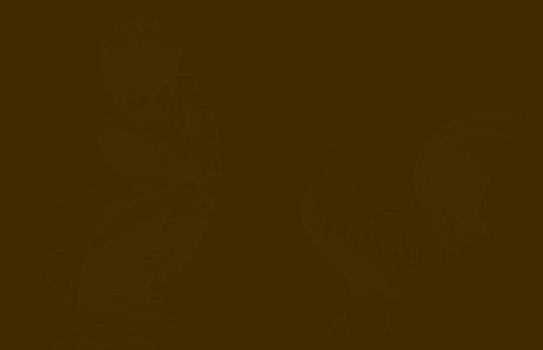 Junge mit Hahn 524